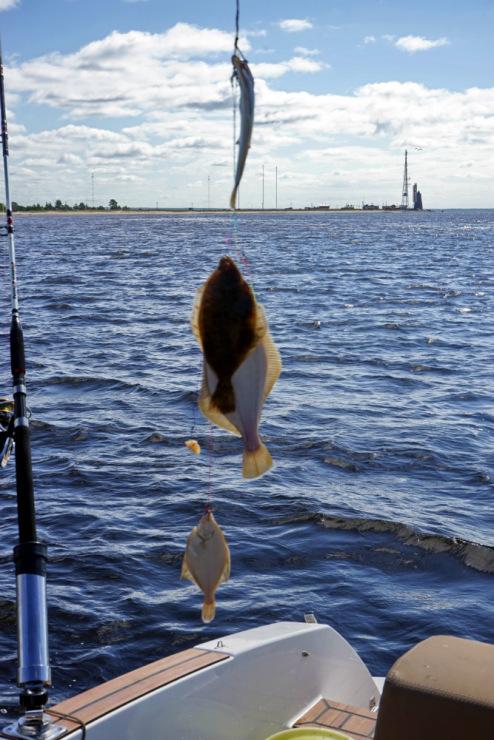 эхолоты для рыбалки на горных реках