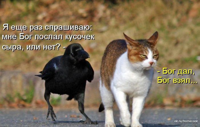 http://data25.gallery.ru/albums/gallery/225582-b9751-87480791-m750x740-uf1276.jpg
